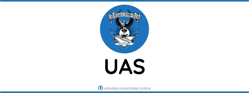 universidad de sinaloa en linea gratis